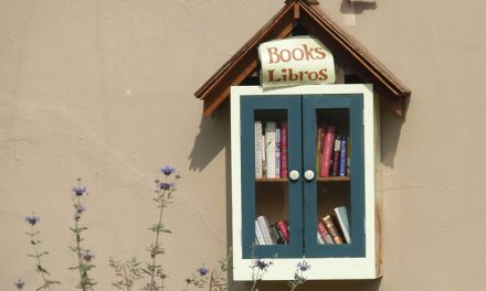 Why Not Start Your Own Library?