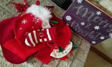 2020 Christmas Spirit in Oppositeland